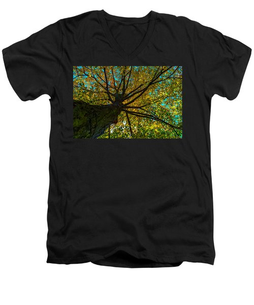 Under The Tree S Skirt Men's V-Neck T-Shirt