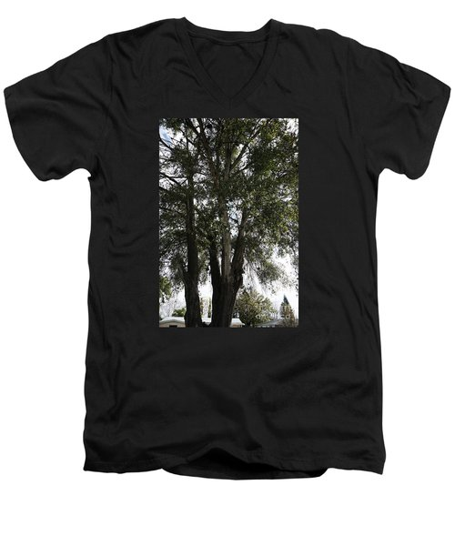 Up-view Of Oak Tree Men's V-Neck T-Shirt