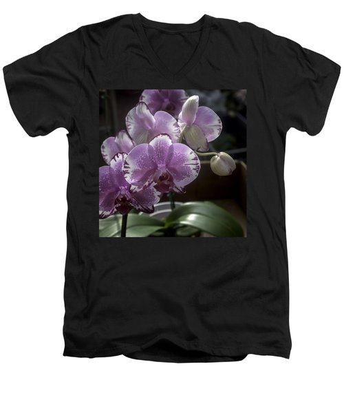 Variegated Fuscia And White Orchid Men's V-Neck T-Shirt