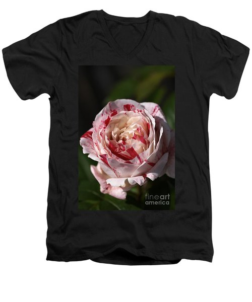 Men's V-Neck T-Shirt featuring the photograph Variegated Rose by Joy Watson