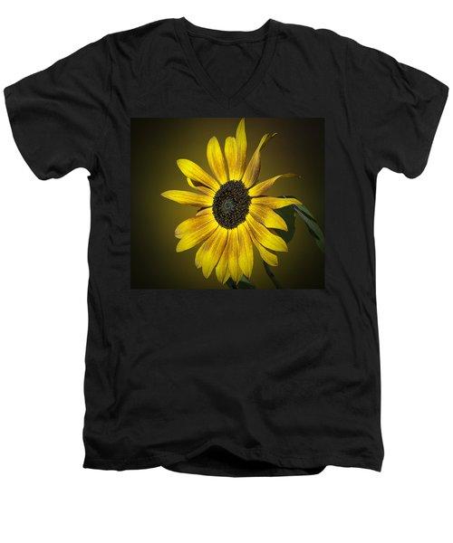 Velvet Queen Sunflower Men's V-Neck T-Shirt