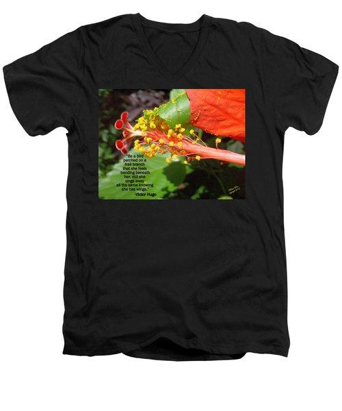 Victor Hugo Men's V-Neck T-Shirt