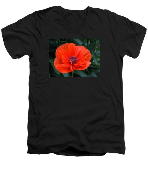 Men's V-Neck T-Shirt featuring the photograph Village Poppy by Francine Frank