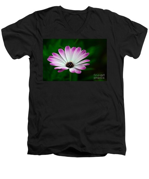 Violet And White Flower Petals With Yellow Stamens Blossoms  Men's V-Neck T-Shirt