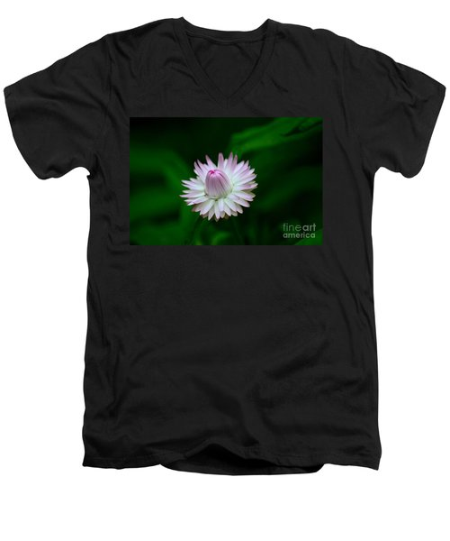 Violet And White Flower Sepals And Bud Men's V-Neck T-Shirt