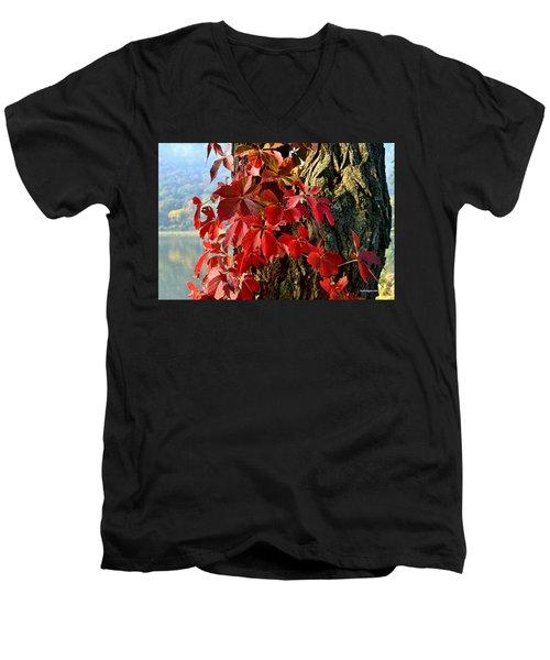 Virginia Creeper Men's V-Neck T-Shirt