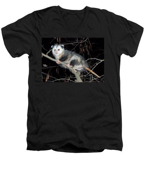 Virginia Opossum Men's V-Neck T-Shirt
