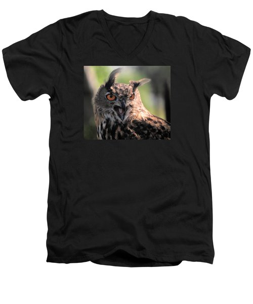 Men's V-Neck T-Shirt featuring the photograph Wake Up by Leticia Latocki