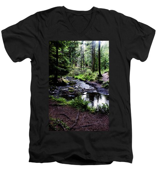 Walk By The Water Men's V-Neck T-Shirt