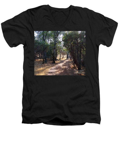 Walking Trail Men's V-Neck T-Shirt