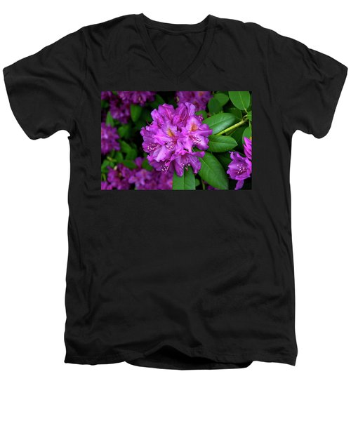 Washington Coastal Rhododendron Men's V-Neck T-Shirt