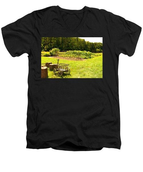 Washington's Garden Men's V-Neck T-Shirt