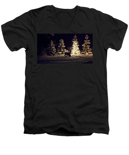 Men's V-Neck T-Shirt featuring the photograph Watchful Eye by Aaron Aldrich