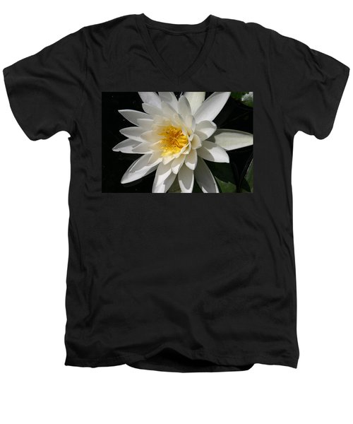 Men's V-Neck T-Shirt featuring the photograph Water Lily  by Denyse Duhaime