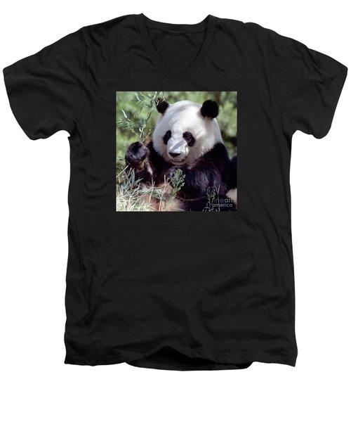 Waving The Bamboo Flag Men's V-Neck T-Shirt by Liz Leyden