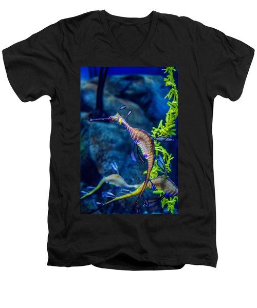 Weedy Seadragon Men's V-Neck T-Shirt