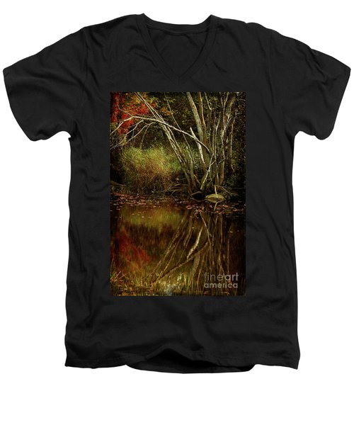 Weeping Branch Men's V-Neck T-Shirt