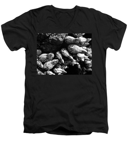 Men's V-Neck T-Shirt featuring the photograph West Coast Delicacy by Cheryl Hoyle