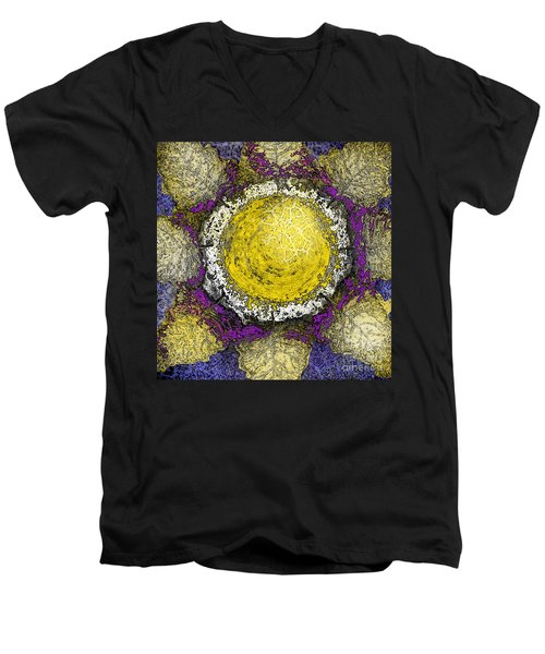 What Kind Of Sun II Men's V-Neck T-Shirt