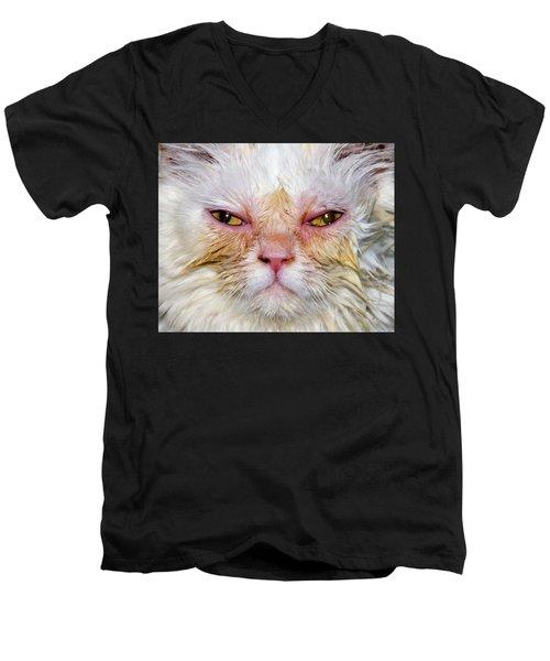 Scary White Cat Men's V-Neck T-Shirt