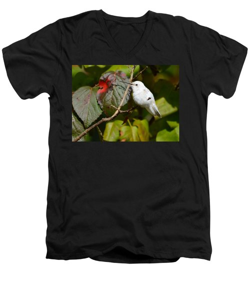 White Hummingbird Men's V-Neck T-Shirt