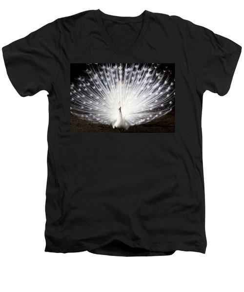 White Peacock Men's V-Neck T-Shirt by Daniel Precht
