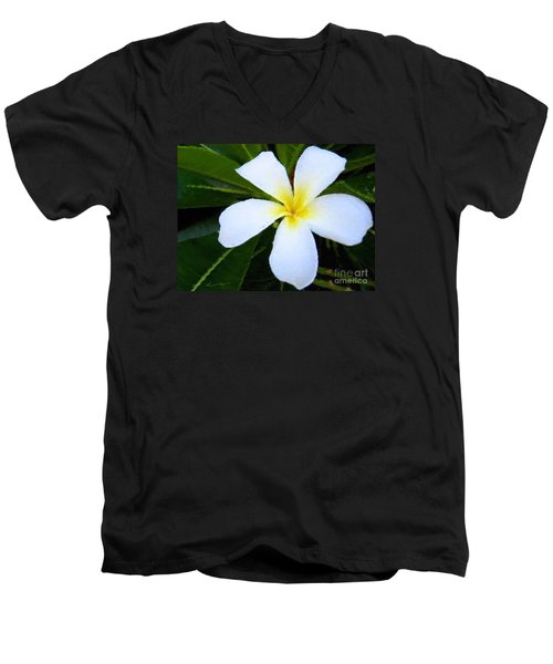 Men's V-Neck T-Shirt featuring the mixed media White Plumeria by Anthony Fishburne