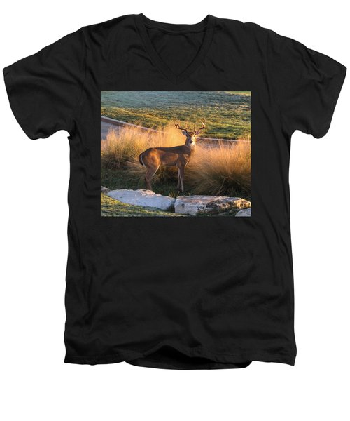 White Tail Men's V-Neck T-Shirt