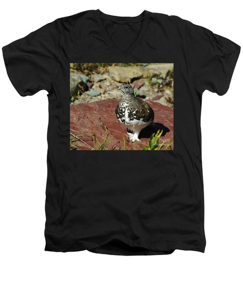 White-tailed Ptarmigan Men's V-Neck T-Shirt
