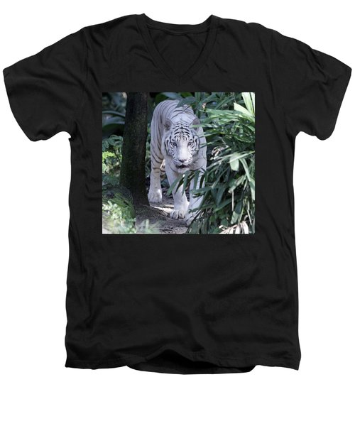 Men's V-Neck T-Shirt featuring the photograph White Tiger  by Shoal Hollingsworth