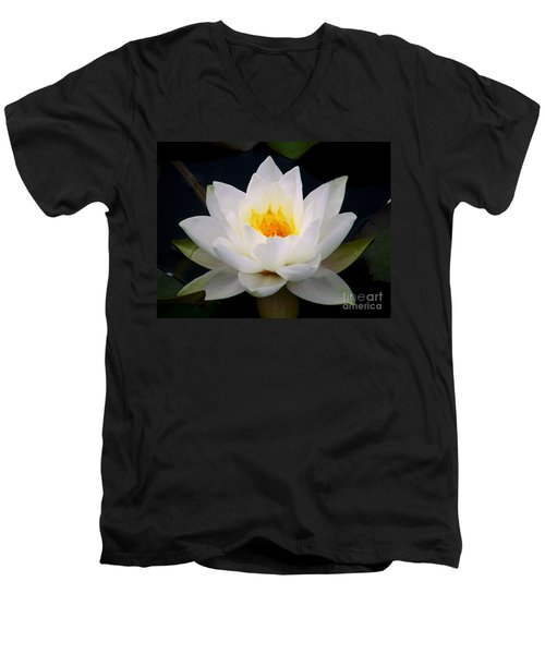 White Water Lily Men's V-Neck T-Shirt by Nina Ficur Feenan