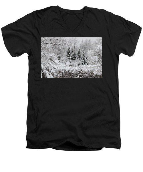 White Winter Day Men's V-Neck T-Shirt