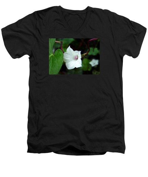 Wild Whitestar Morning Glory Men's V-Neck T-Shirt