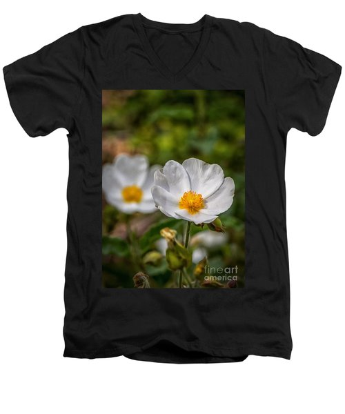Wildflower Poppin Men's V-Neck T-Shirt