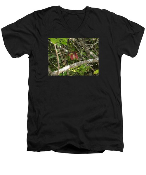 Men's V-Neck T-Shirt featuring the photograph Wildflower by Robert Nickologianis