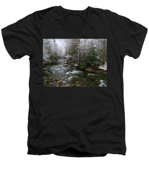 Winter Fresh Men's V-Neck T-Shirt by Michael Eingle