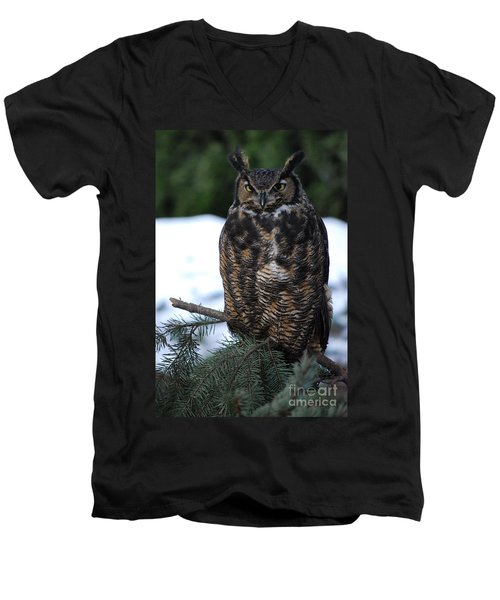 Men's V-Neck T-Shirt featuring the photograph Wise Old Owl by Sharon Elliott