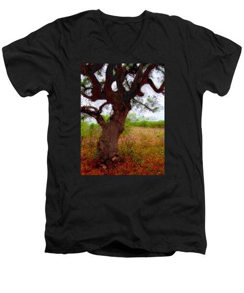 Da214 Wise Old Tree By Daniel Adams Men's V-Neck T-Shirt