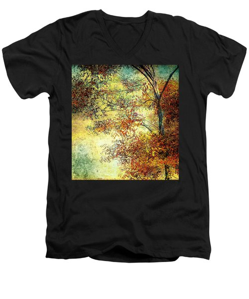 Wondering Men's V-Neck T-Shirt
