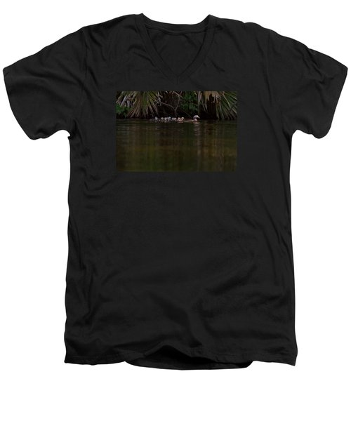 Wood Duck And Ducklings Men's V-Neck T-Shirt by Paul Rebmann