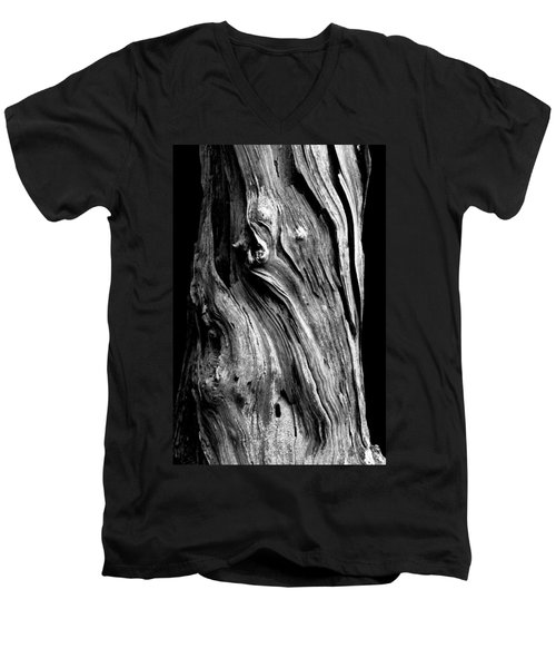 Wood Men's V-Neck T-Shirt by Shane Holsclaw