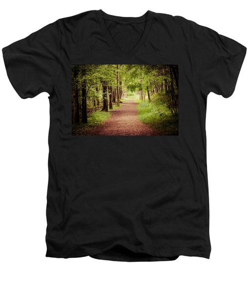 Woodland Trail Men's V-Neck T-Shirt by Sara Frank