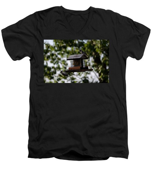Woodpeckers At Dinner Men's V-Neck T-Shirt