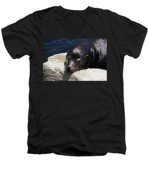 Wounded Sea Lion Resting Men's V-Neck T-Shirt by Susan Wiedmann