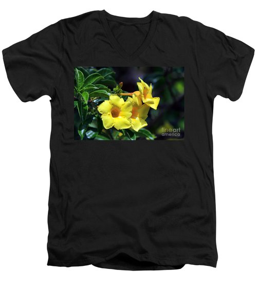 Men's V-Neck T-Shirt featuring the photograph Yellow Allamanda by Teresa Zieba