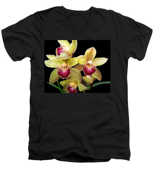 Yellow And Pink Orchids Men's V-Neck T-Shirt