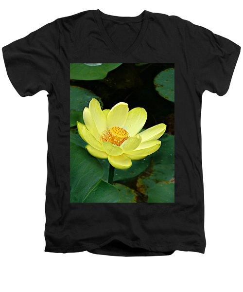 Yellow Lotus Men's V-Neck T-Shirt