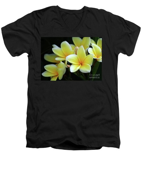 Yellow Plumeria Cascade Men's V-Neck T-Shirt