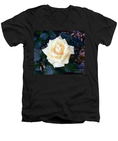Men's V-Neck T-Shirt featuring the photograph Yellow Rose At Dawn by Alys Caviness-Gober