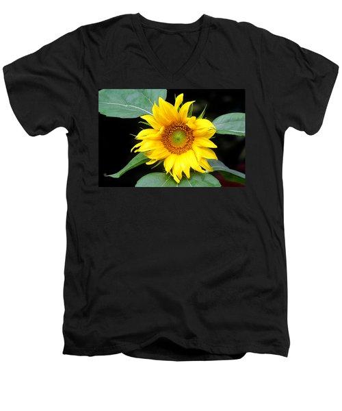 Yellow Sunflower Men's V-Neck T-Shirt